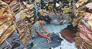 Tanners apprehend cancellation of Tk 1,100cr export orders